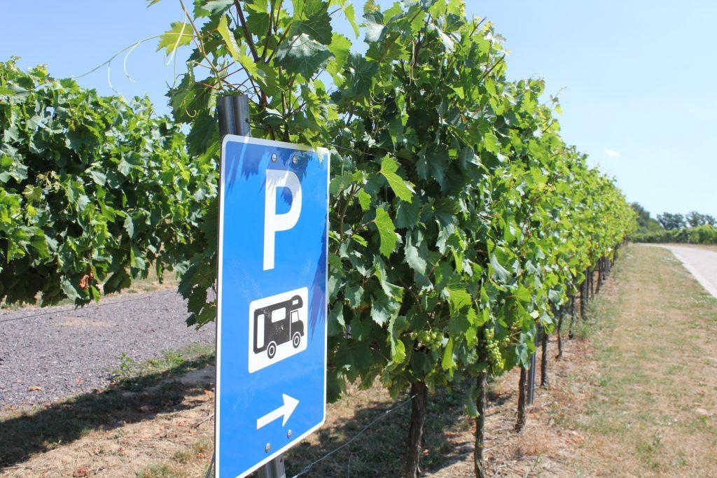 03. camperen tussen de wijngaarden