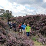 Pasen 2021 - wandelen in en Drenthe